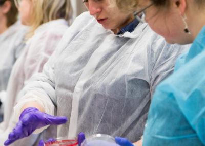 Podstawy-Mikrobiologii-Weterynaryjnej_MG_2534