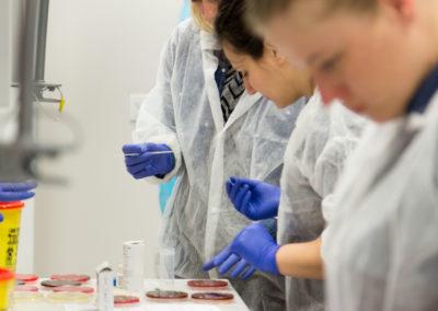 Podstawy-Mikrobiologii-Weterynaryjnej_MG_2559